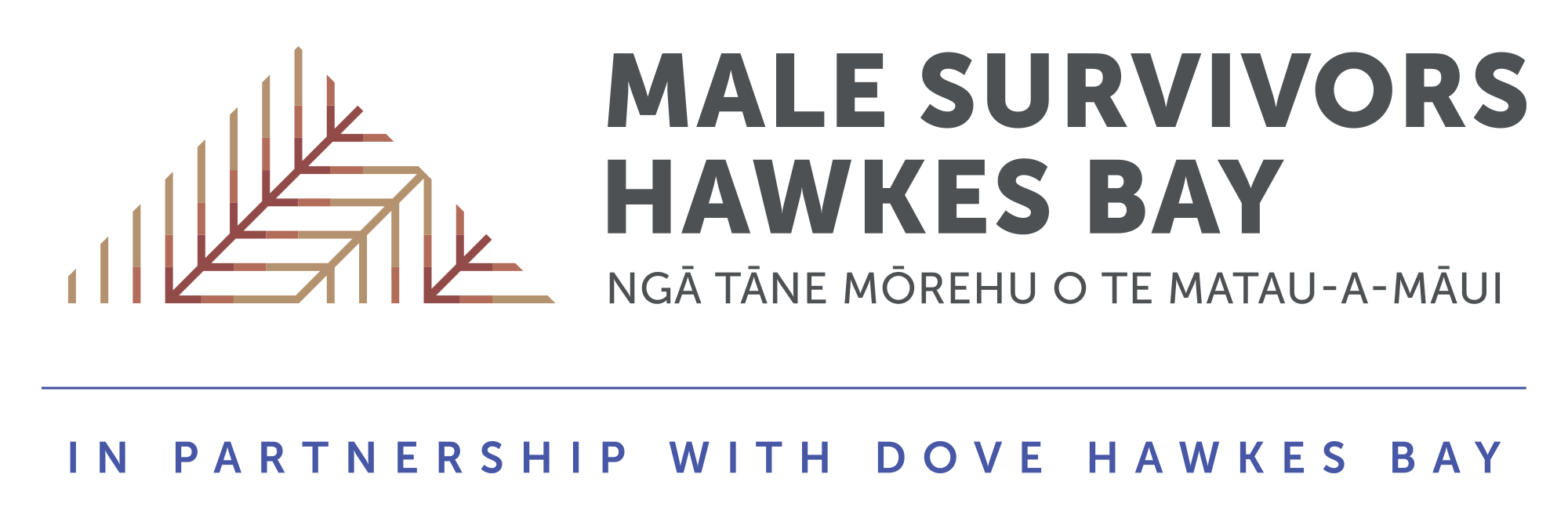 Male Survivors Hawkes Bay